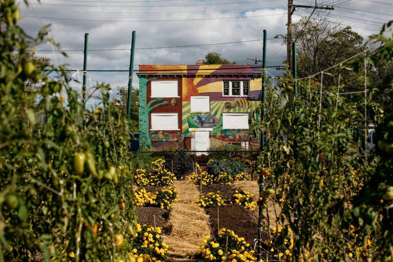 1st U.S. Urban Agrihood: Detroit MUFI