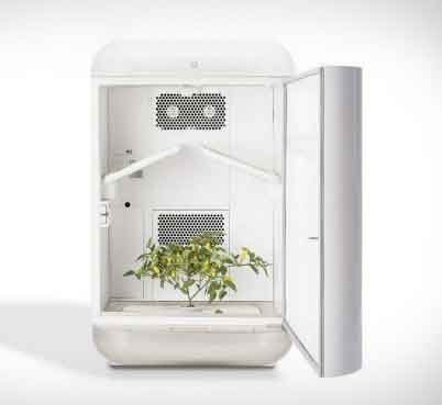 automated grow box