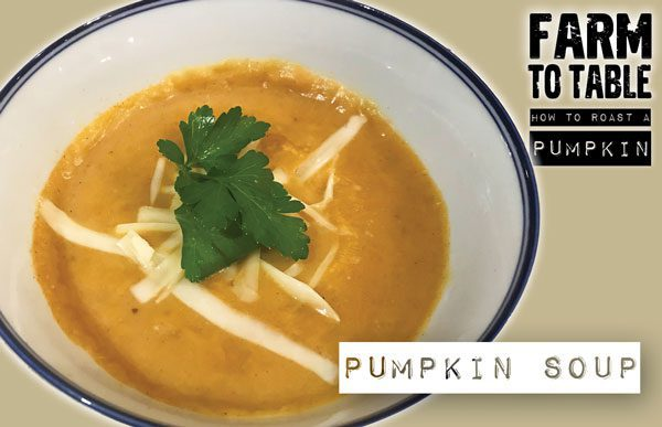 http://gcm1.wpengine.com/from-pumpkin-patches-to-landfills-what-to-do-with-halloween-leftovers/