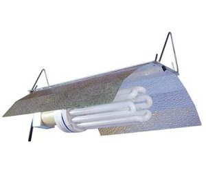 Bright Wing CFL Fixture