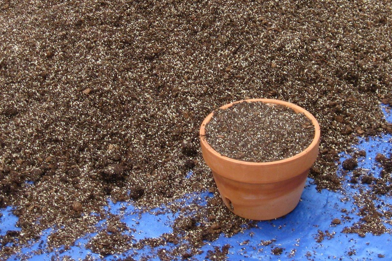 About that bag of potting mix garden culture magazine for Topsoil vs potting soil