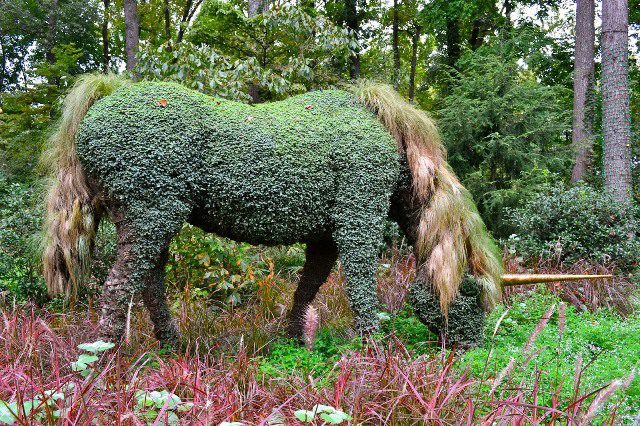 Unicorn At Atlanta Botanical Gardens
