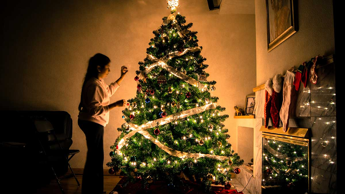 Which type of Christmas tree do you use?