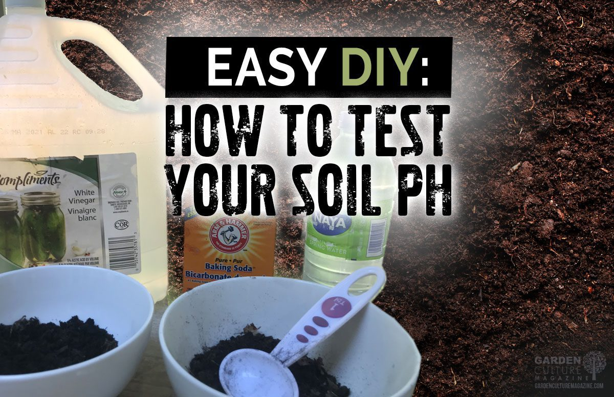 DIY Soil test PH