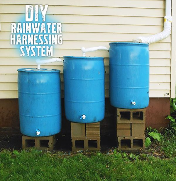 DIY Rainwater collecting system