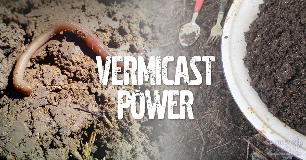 vermicast power