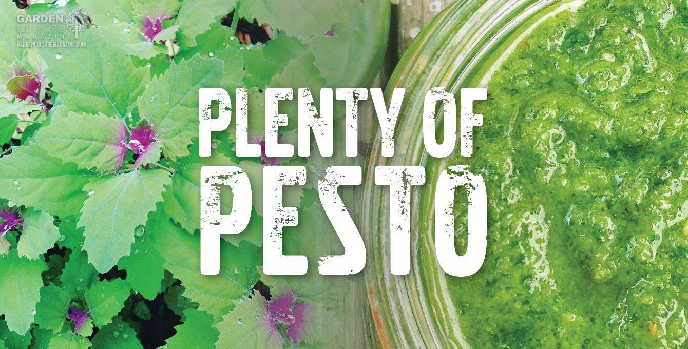 Farm to table Pesto