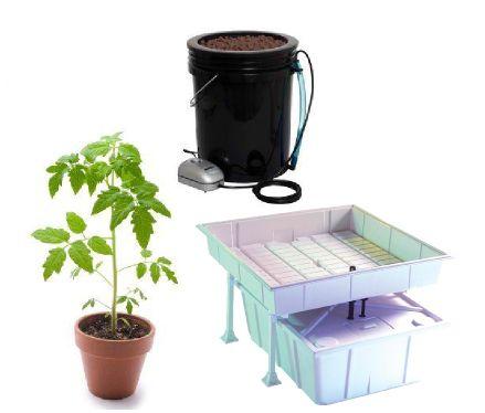 What's the Best Indoor Gardening Method?