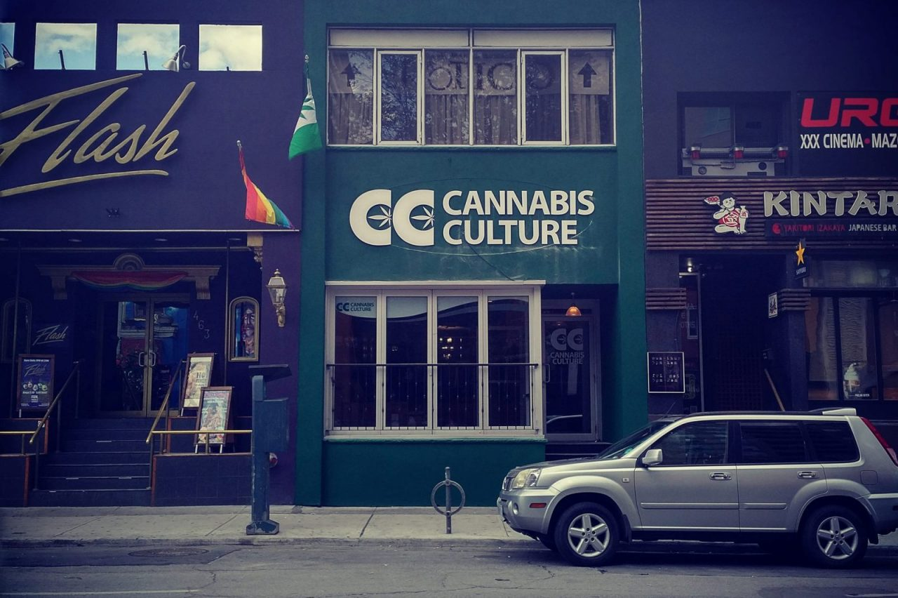 Cannabis Contamination Clouds Montreal Shop Openings