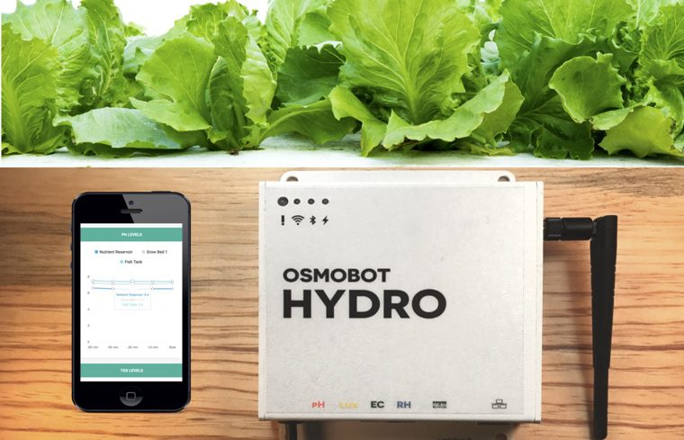 Meet the Cheap Online Hydroponic System Monitor - OsmoBot