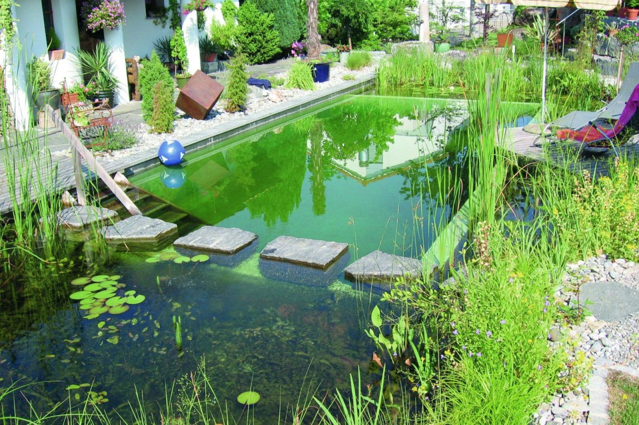Natural Swimming Pools Organic Habitat Garden Culture